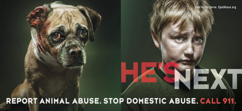 Domestic Violence and Animal Cruelty