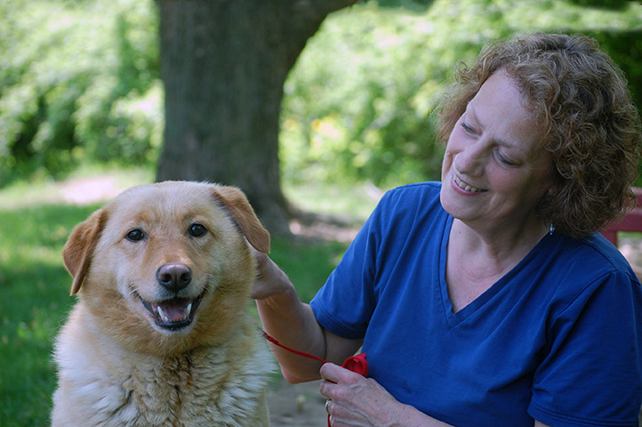 Pet Training Methods | New Hampshire SPCA