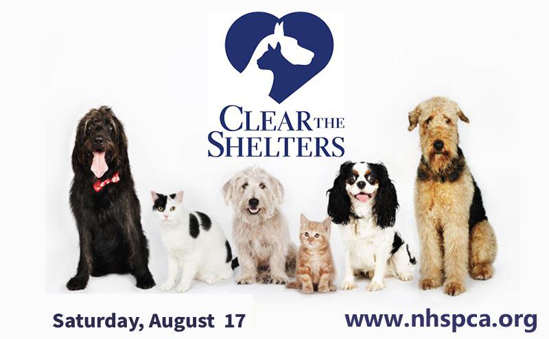Petsmart National Adoption Event